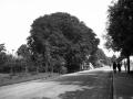 s-Gravenweg 1932-1 -a