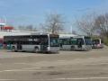 Busstation metro Capelsebrug 2015-2 -a