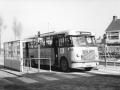 280-5a-Saurer-Hainje