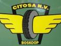 Citosa logo-1-a