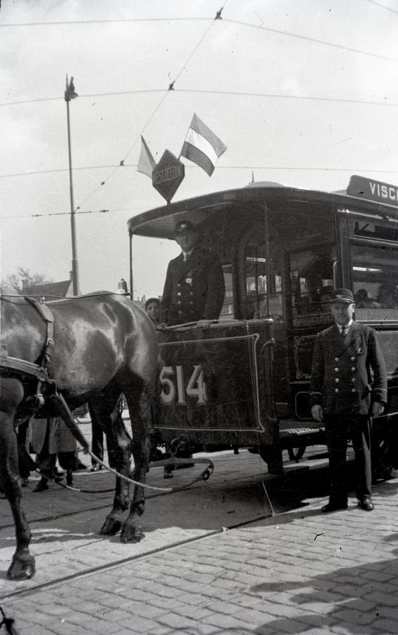 1934-VVV-week-11