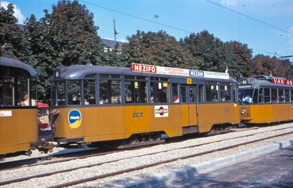 1971-NVBS-19