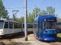 Magdeburg-8