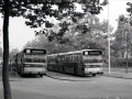 Stadionbus-753-1 -a
