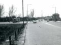 if Buitendijk 1968-1 -a