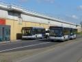 Busbuffer Brandersbrug-2 -a