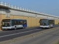 Busbuffer Brandersbrug-3 -a