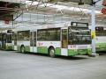 401-C6 DAF-Hainje -a