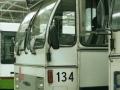 134-5 DAF-Hainje recl -a