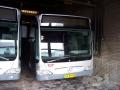 212-2 Mercedes-Citaro