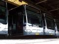 213-2 Mercedes-Citaro