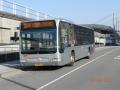 217-4 Mercedes-Citaro