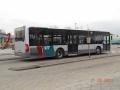 230-11 Mercedes-Citaro -a