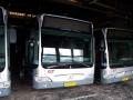 233-2 Mercedes-Citaro -a