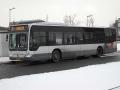 243-7 Mercedes-Citaro -a