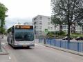 243-8 Mercedes-Citaro -a