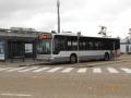 244-4 Mercedes-Citaro -a