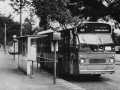 267-01-Leyland-Panther-a