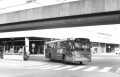 249-02-Leyland-Panther-a