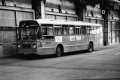 254-05-Leyland-Panther-a