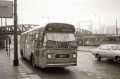 259-02-Leyland-Panther-a