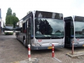 257-2 Mercedes-Citaro