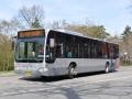 259-4 Mercedes-Citaro