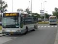 270-8 Mercedes-Citaro -a