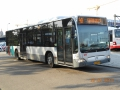 267-5 Mercedes-Citaro