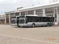 277-2 Mercedes-Citaro
