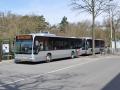 282-8 Mercedes-Citaro