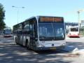 343-1 Mercedes-Citaro -a