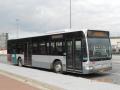 333-1 Mercedes-Citaro