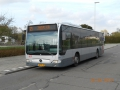 344-3 Mercedes-Citaro