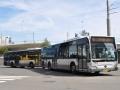 353-3 Mercedes-Citaro -a