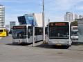 353-2 Mercedes-Citaro