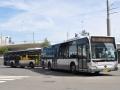 353-3 Mercedes-Citaro