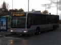 364-9 Mercedes-Citaro -a