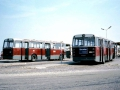 484-10 DAF-Hainje-a
