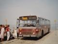 486-3 DAF-Hainje -a