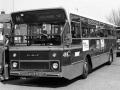 498-10 DAF-Hainje-a