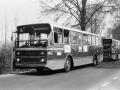 498-3 DAF-Hainje -a