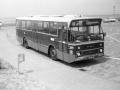 499-10 DAF-Hainje -a