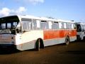 499-17 DAF-Hainje-a