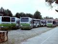 1_515-9-Volvo-Hainje-a