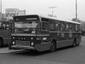 546-2 DAF-Hainje -a
