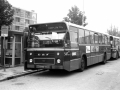547-4 DAF-Hainje -a