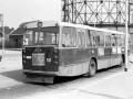 531-3 DAF-Hainje -a