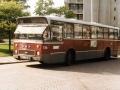 536-2 DAF-Hainje -a
