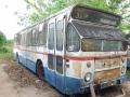 579-12 DAF-Hainje-a